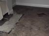 parquet-flooring-before-5